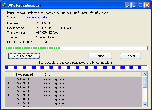 Screenshot Speed Download File Dengan Internet Download Manager atau Torrent?
